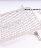 Pelindung Radiator Xabre - Pelindung Radiator Xabre - Pelindung Radiator Xabre - Pelindung Radiator Xabre