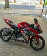 Cover DeltaBox CBR 250 RR Costum Premium 2