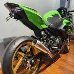 Knalpot Ninja 250 New Arrow Italy Pro Race