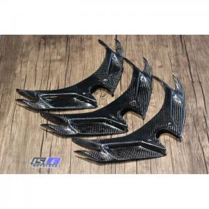 Winglet Kawasaki Ninja 250 2018 Up Carbon