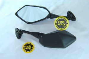 Spion Ninja 650