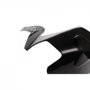 Swing Arm Cover Ducati Panigale 1199 Panigale 1129 Carbon2Race