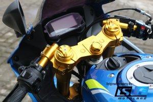 NUI Upside Down Suzuki GSX R150